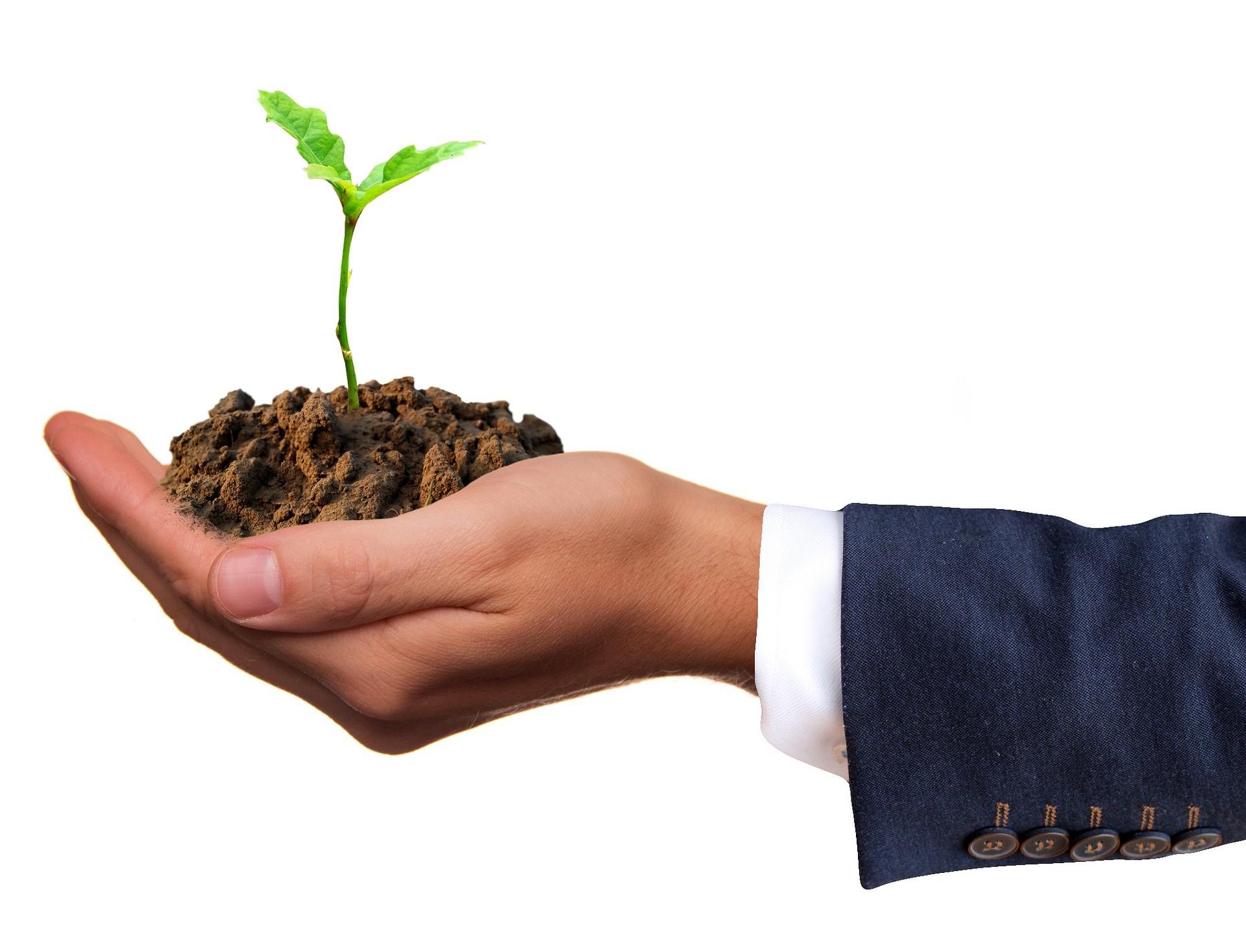 man holding plant